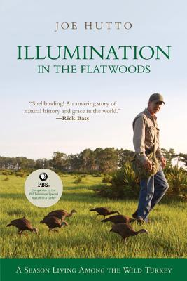 Illumination in the Flatwoods By Hutto, Joe